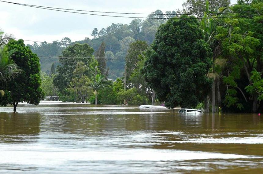Flood Impact Survey